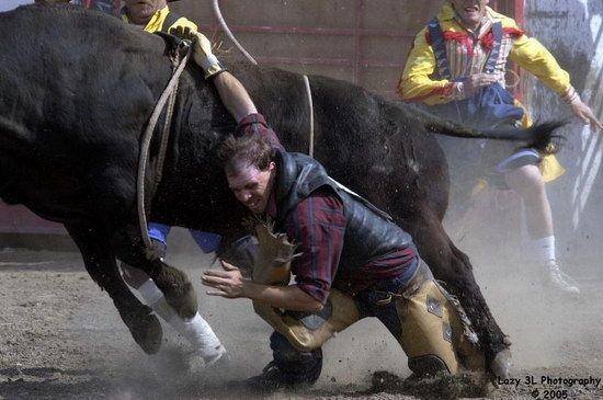 Как сделать бык родео своими руками