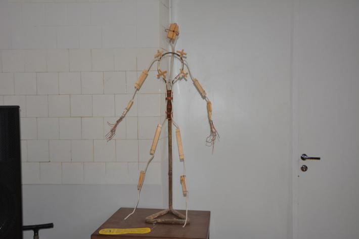 скелет скульптуры